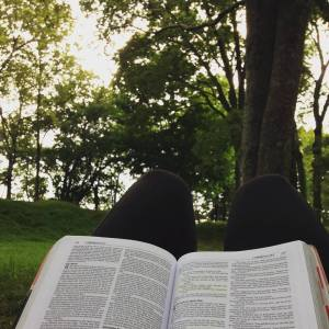 A woods bible